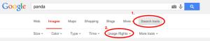 panda   Google Search